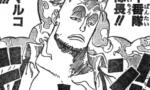 【ワンピース】白ひげ海賊団ナンバー2のマルコってペロ兄くらいすごい立場のはずなのに全然そんなイメージが湧かない